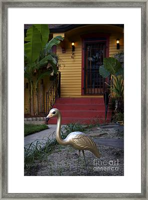 Gold Flamingo Framed Print by Jeanne  Woods