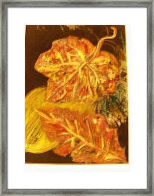 Gold Gold Gold Framed Print by Anne-Elizabeth Whiteway