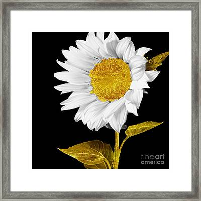 Gold Hearted Framed Print