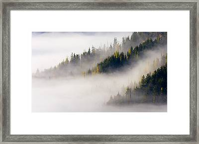 Gold In Them Hills Framed Print by Mike  Dawson