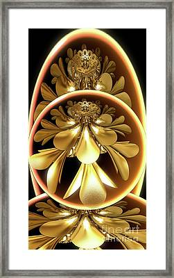 Gold Lacquer Framed Print