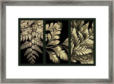 Gold Leaf Triptych Framed Print by Jessica Jenney