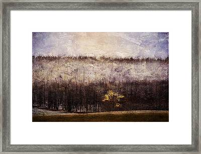 Gold Leafed Tree In Snow Framed Print