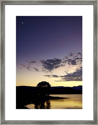 Gold Moon Light Framed Print by Michael Knight
