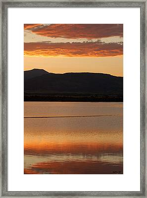Gold Reflection Framed Print by Michael Knight