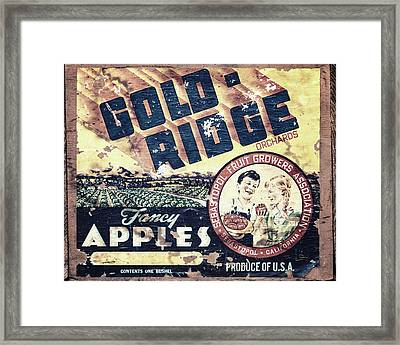 Gold Ridge Apple Crate Framed Print by Lisa Russo