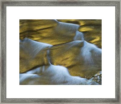 Gold Scales Framed Print