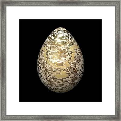 Gold-speckled Egg Framed Print by Hakon Soreide