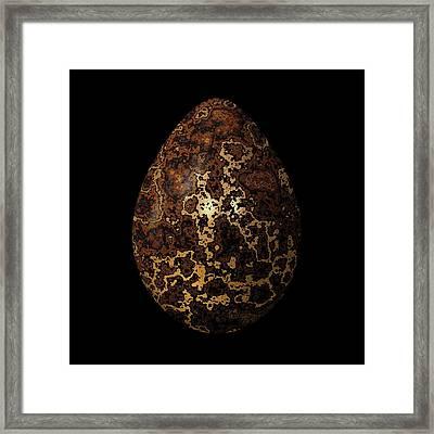 Gold-streaked Egg Framed Print by Hakon Soreide