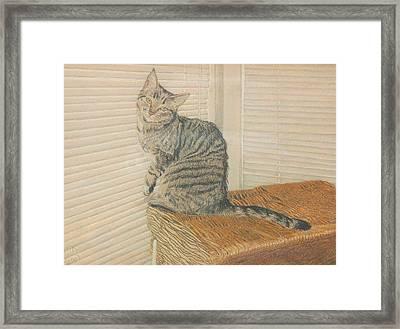 Goldberry Framed Print by Miriam A Kilmer