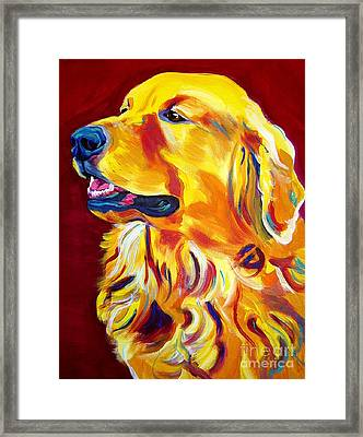 Golden - Scout Framed Print
