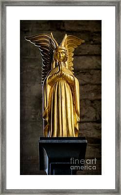 Golden Angel Framed Print by Adrian Evans