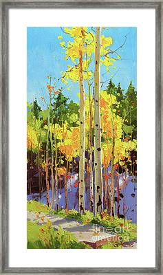 Golden Aspen In Early Snow Framed Print by Gary Kim