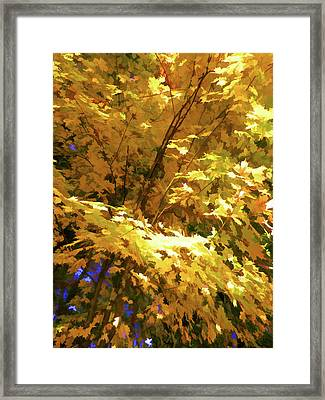 Golden Autumn Scenery Framed Print by Lanjee Chee