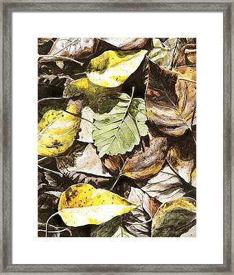 Framed Print featuring the painting Golden Autumn - Talkeetna Leaves by Karen Whitworth