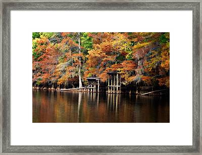 Golden Bayou Framed Print by Lana Trussell