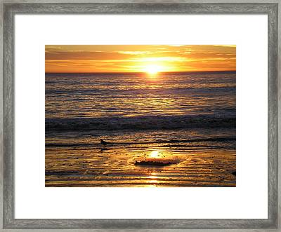 Golden Beach Framed Print by J Perez