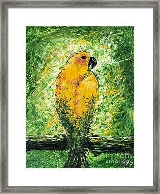 Golden Bird Framed Print