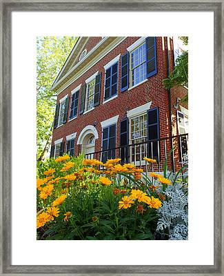 Golden Blooms At The Dahlonega Gold Museum Framed Print