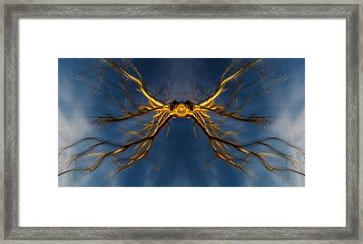 Golden Branch-man Framed Print by Pelo Blanco Photo