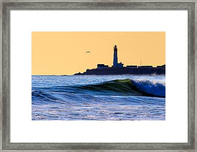 Golden California Coast - Pigeon Point Lighthouse Framed Print by Mark E Tisdale