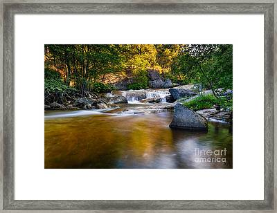 Golden Calm Framed Print