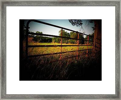 Golden Country Fence Framed Print by Joyce Kimble Smith