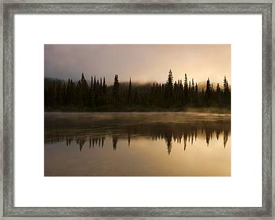 Golden Dawn Framed Print by Mike  Dawson