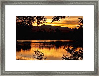 Golden Day At The Lake Framed Print by James BO  Insogna