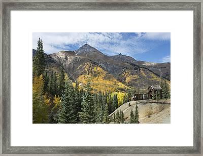 Golden Days Framed Print