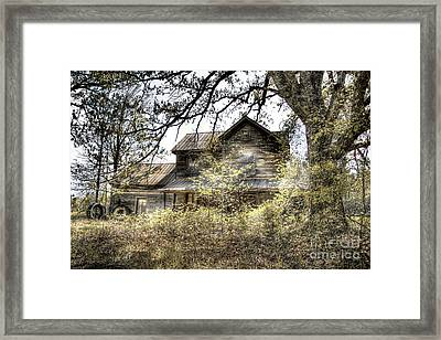 Golden Days Framed Print by Sari Sauls