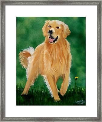 Golden Framed Print by Debbie LaFrance