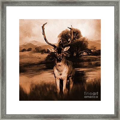 Golden Deer  Framed Print