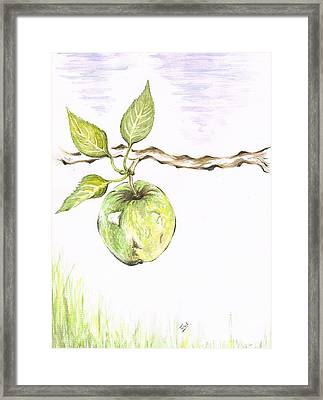 Golden Delishous Apple Framed Print