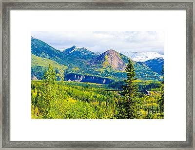Golden Denali Framed Print