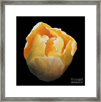 Framed Print featuring the painting Golden Double Tulip by Phyllis Howard
