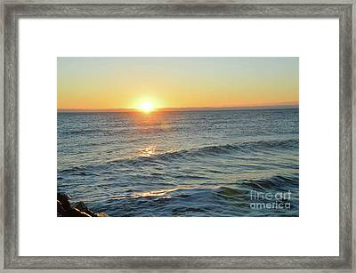 Golden Dreams Framed Print by Robyn King