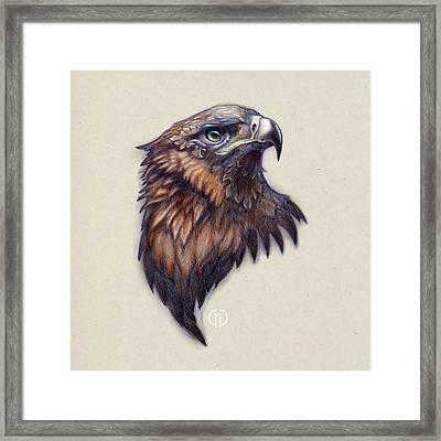 Golden Eagle Framed Print