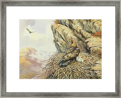 Golden Eagles At Eyrie Framed Print by Carl Donner
