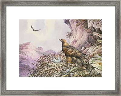 Golden Eagles At Their Eyrie Framed Print by Carl Donner