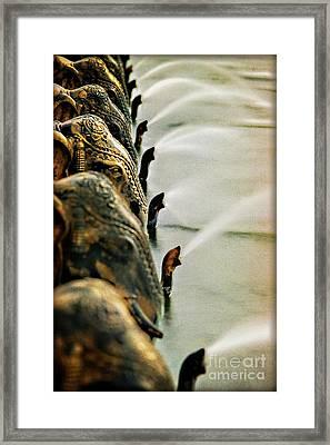 Golden Elephant Fountain Framed Print