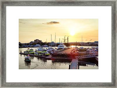 Golden Evening Framed Print