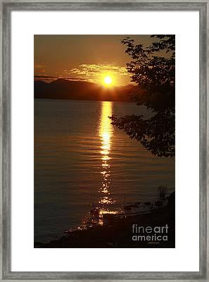Golden Evening Sun Rays Framed Print by Deborah Benoit