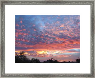 Golden Eye Landing In The Desert Framed Print