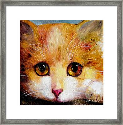 Golden Eye Framed Print by Shijun Munns
