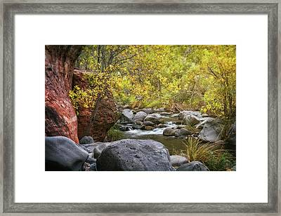 Golden Fall Memories  Framed Print