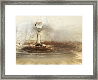 Golden Featherdrops Framed Print by Heidi Westum