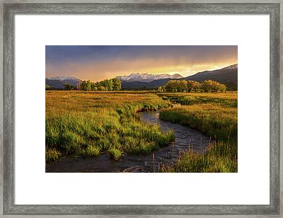 Golden Field In Heber Valley. Framed Print
