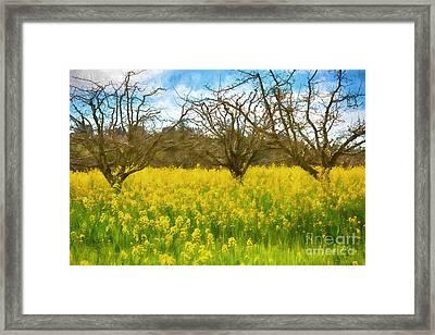 Golden Field Framed Print