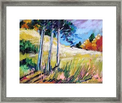 Golden Fields Framed Print by John Williams